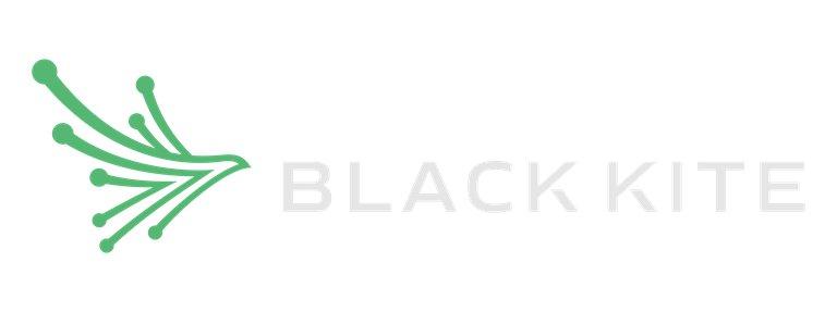 Black Kite D - Cyber Risk scoring.png